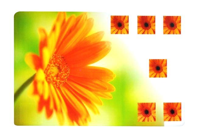 "TORO Prestieranie ""kvety"""