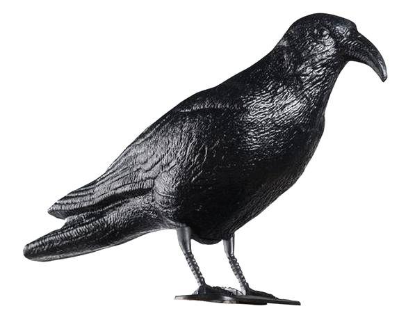 TORO Odpudzovač holubov - havran