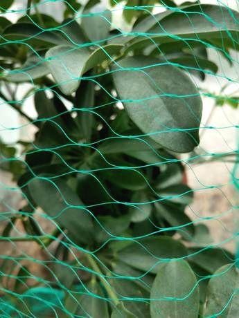 TORO Ochranná sieť proti vtákom Toro 4 x 10 m