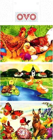 DRUCHEMA Zmršťovacia košieľka na vajíčko OVO tradičná